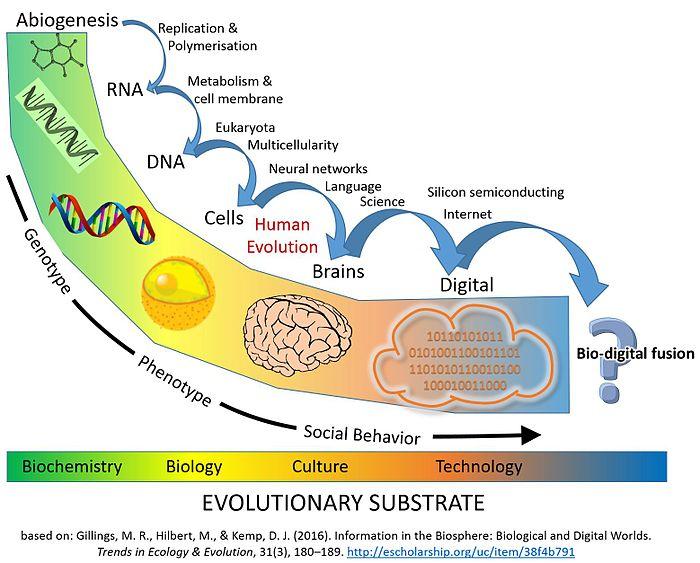 生物圏における情報とレプリケーターの概略タイムライン:Gillings etal。の情報処理における「主要な進化的遷移」。[87]