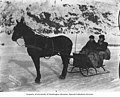 Man and woman in a horse drawn sled in Dawson, Yukon Territory, circa 1900 (AL+CA 2755).jpg
