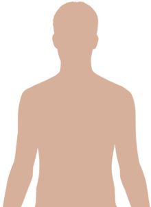 Upper Side Body Diagram http://commons.wikimedia.org/wiki/Human_body_diagrams