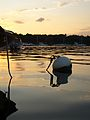 Manhasset Bay West Side Sunset 1.jpg