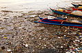 Manila Bay Pasig and Pampanga River Basins pollution 2008.jpg
