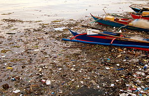 Pollution of the Pasig River - Pollution in Manila Bay. Manila Bay is the catchment area of the Pasig and Pampanga River Basins.