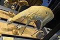 Mannequin de chevreuil et mannequin d'oiseau en cours de réalisation MHNLille.JPG