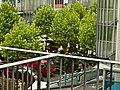 Market-place - panoramio.jpg