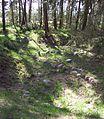 Menzlin Altes Lager 03.jpg