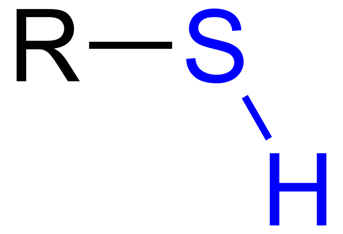 Sulfhydryl Functional Group Properties