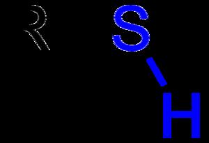 Thiol - Thiol with a blue-highlighted sulfhydryl group.