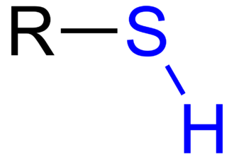 Thiol - Thiol with a BLUE-highlighted sulfhydryl group.