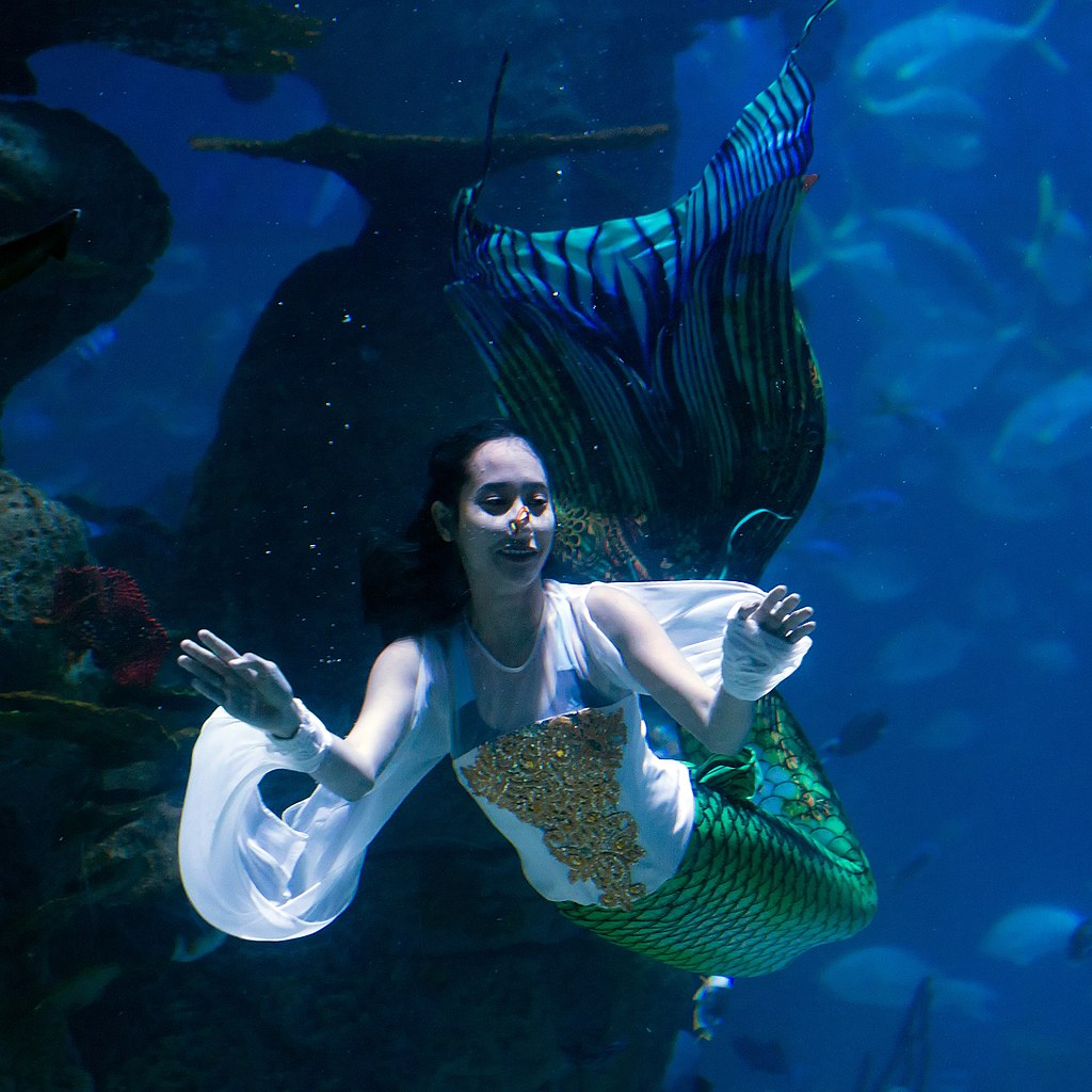 Neo Soho Aquarium: File:Mermaid Performance, Jakarta Aquarium, Neo Soho