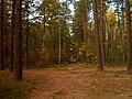 Mezs - panoramio (9).jpg