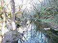 Mladejka River.JPG