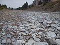 Modonkul river 2.jpg