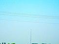 Monopole Cell Tower near Dickeyville - panoramio.jpg