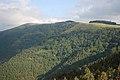 Monte - panoramio (16).jpg