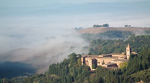 Monte Oliveto 307