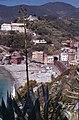 Monterosso-10-Strand-Agave-1979-gje.jpg