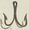 Montpetit - Poissons d'eau douce du Canada, 1897 (page 398 crop) fig 77.jpg