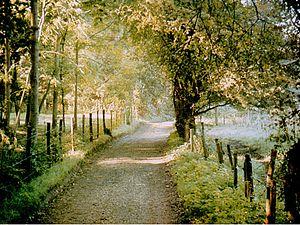 Moor Park, Farnham - Moor Park Lane
