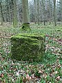 Mossy Stone in beech woods, Forest of Dean - geograph.org.uk - 1029788.jpg