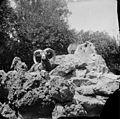 Mouflons, Luchon (environs) (2553720826).jpg