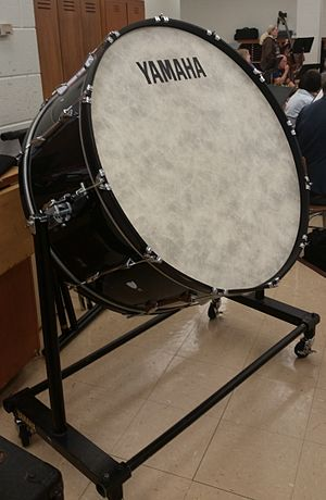 Bass drum - This is a typical mounted bass drum used for concert bands and orchestras