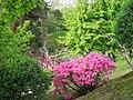 Musée jardin albert kahn boulogne billancourt.jpg