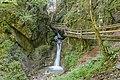 NDOÖ 181 Dr Vogelgesangklamm erster Wasserfall.jpg