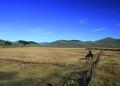 NRCSMT01039 - Montana (4927)(NRCS Photo Gallery).tif