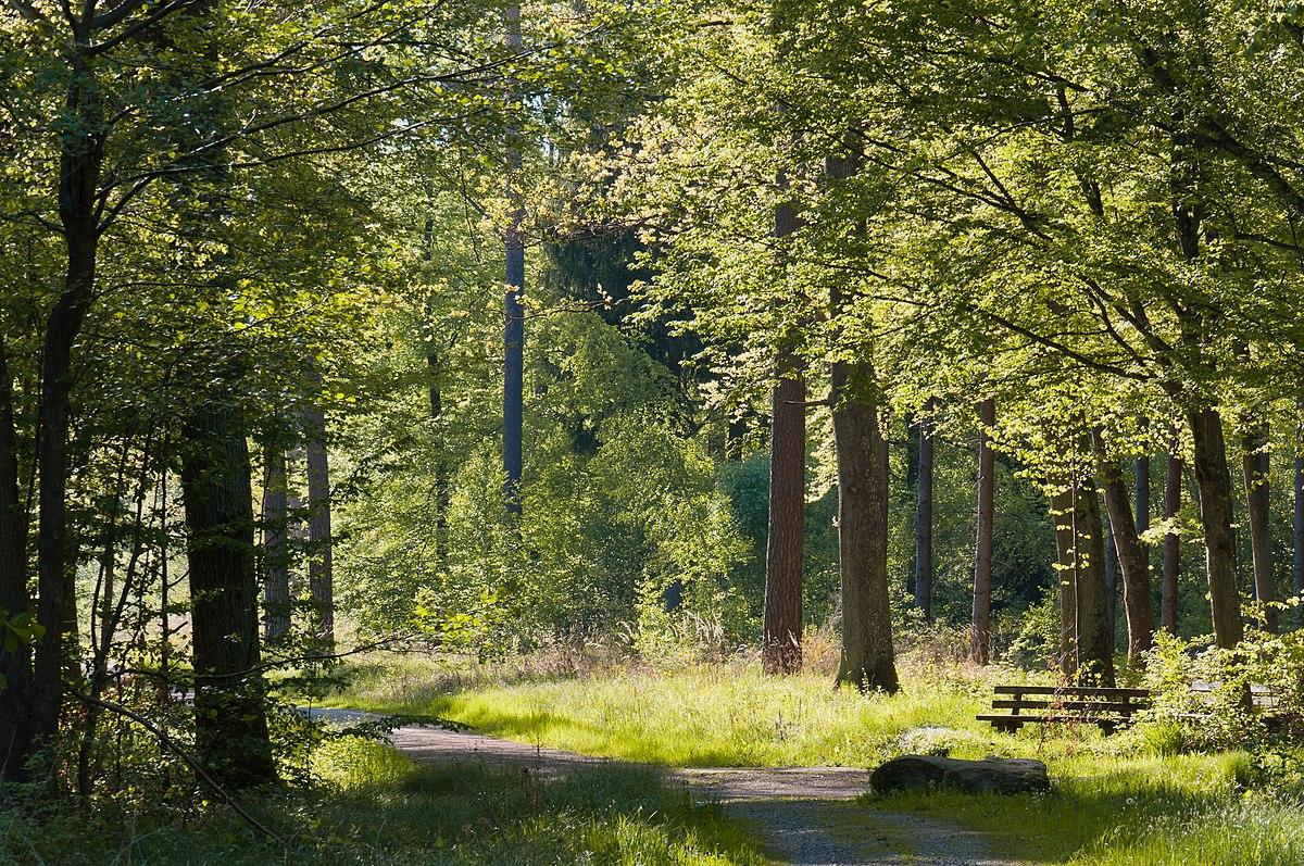 Rotwildpark wikipedia la enciclopedia libre for Habitat stuttgart