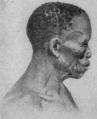 NSRW Africa Bushman Woman.png