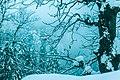 Nathiagali Snowfall.jpg