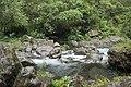 Nature La Réunion, janvier 2018 07.jpg