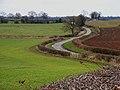 Near Bedale Wood Farm - geograph.org.uk - 139444.jpg