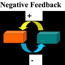 positive and negative economics