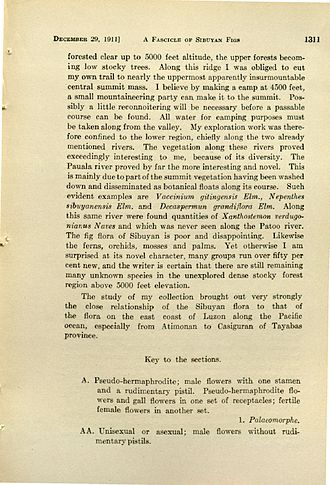 Nepenthes sibuyanensis - Mention of N. sibuyanensis in a 1911 issue of Leaflets of Philippine Botany