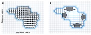 Robustness (evolution) - Each circle represents a functional gene variant and lines represent point mutations between them. Light grid-regions have low fitness, dark regions have high fitness. (a) White circles have few neutral neighbours, black circles have many. Light grid-regions contain no circles because those sequences have low fitness. (b) Within a neutral network, the population is predicted to evolve towards the centre and away from 'fitness cliffs' (dark arrows).