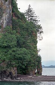 New Eddystone Rock(js)06.jpg