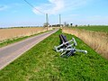 New Telephone Poles, Wenham's Lane - geograph.org.uk - 394163.jpg