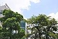 Ngã tư Ng thi Minh Khai va pasteur -q3-HCMVN - panoramio.jpg