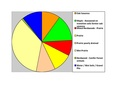 Nicollet Co Pie Chart No Text Version.pdf