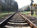 Nordeifel Bahnstrecke zwischen Urft und Nettersheim.jpg