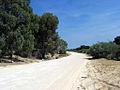 OIC tamala park 2006 connolly dr 1.jpg