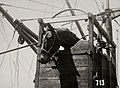 Olympische Spelen 1928 Amsterdam (2949307312).jpg