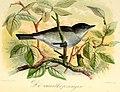 Onze vogels in huis en tuin (1869) (14564980980).jpg