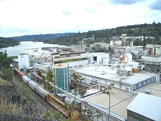 Oregon City, Oregon - Willamette Falls and a paper mill at Oregon City Oregon, on the Willamette River