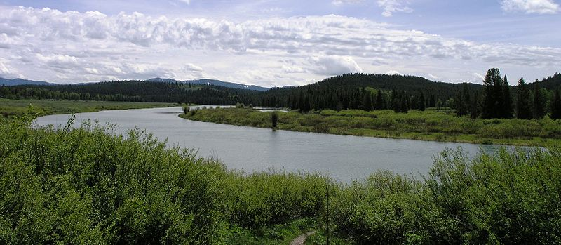 Oxbow Bend overlook of Snake River.JPG