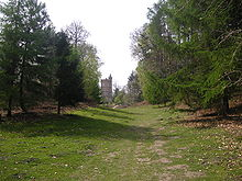 A bare valley has steep sides covered with conifer and birch trees. There is a tall Gothic tower at the far end