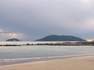 Tino (island) - Image: Palmaria and Tino