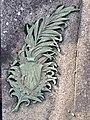 Palme offerte par la société des Anciens sur la tombe d'un camarade.jpg