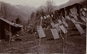 Tawang - Sheets of paper left to dry on individual moulds on the mountain slope near Tawang, Arunchal Pradesh, 1914.